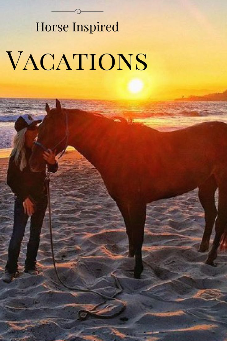 If you love horses and adventure, these vacations are the perfect getaway.