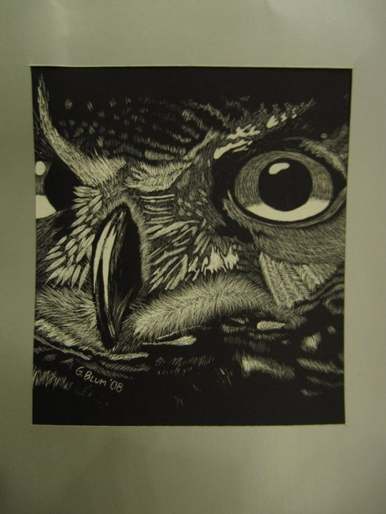 Artist: G Blum Title: Up close Owl drawing  Date 2008 Materials:  white charcoal on black paper