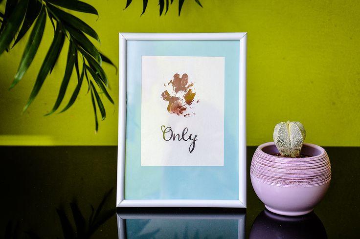 Doggie paw prints in frames / paw print DIY