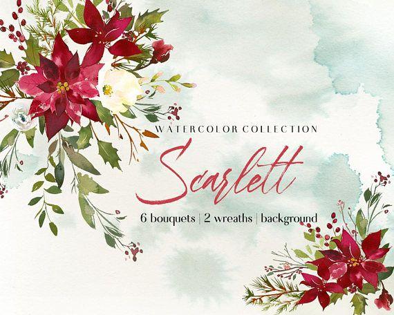 Poinsettia Holly Steams Christmas Watercolor Clipart  Scarlett