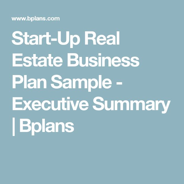 Start-Up Real Estate Business Plan Sample - Executive Summary