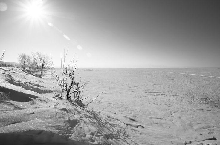 Plescheevo lake in winter. Плещеево озеро. by Leticia Araujo on 500px