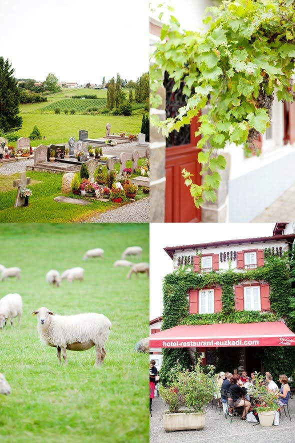 Basque Countryside