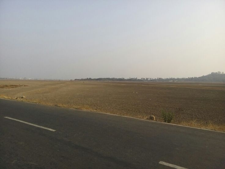 First sign of summer... Green Meadows turning into brown. Pic taken at Gass Road, Vasai, India