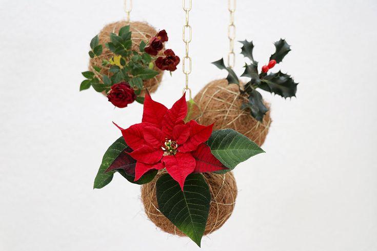 Se mine smukke kokedama, eller planteplaneter, som de også kaldes, der er blevet opdateret til at ose af jul. Perfekt diy projekt til en kreativ jul.