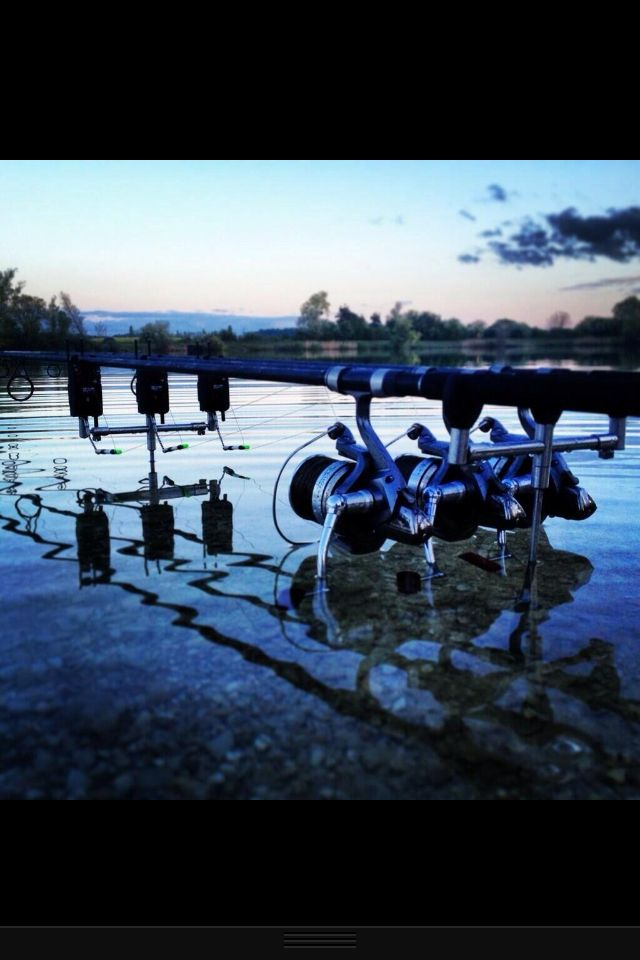 Waiting game #carpfishing