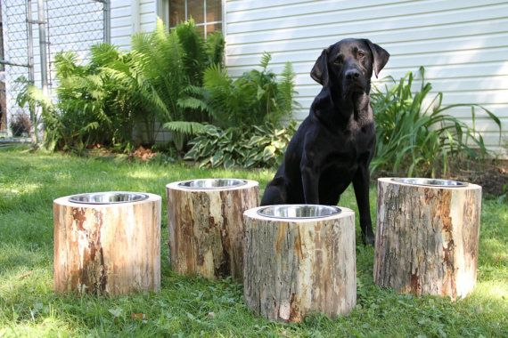 Silver maple logs, made into raised dog feeders. Approximately 10 tall, ideal for a Medium to Large sized dog. Bowl opening cut for 2 quart