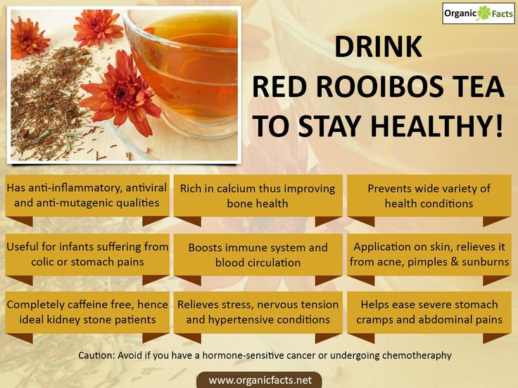 The health benefits of red rooibos tea are abundant. This form of tea has traditionally been popular due to its great taste and unique color, while also boosting the health of the body. Rooibos tea or red tea is a medicinal, herbal beverage that is acquired from the Aspalathus linearis bush plant that is found in South Africa.
