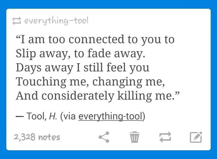 Tool lyric
