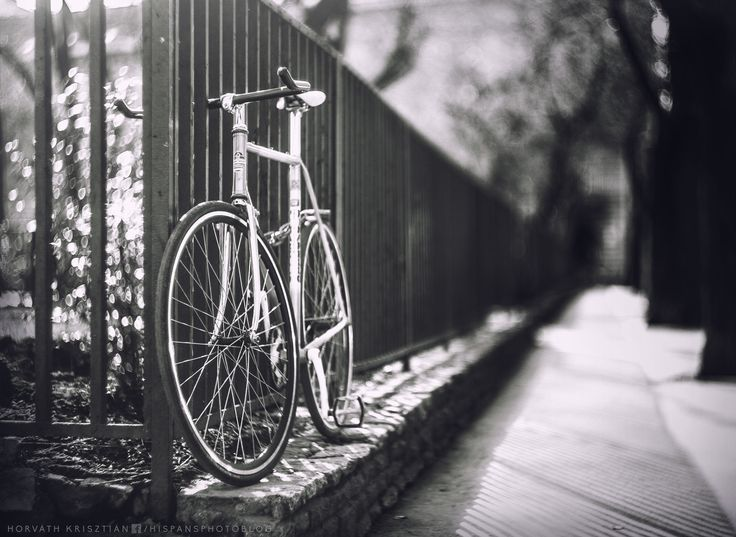 bicycle (with Helios 44-2)