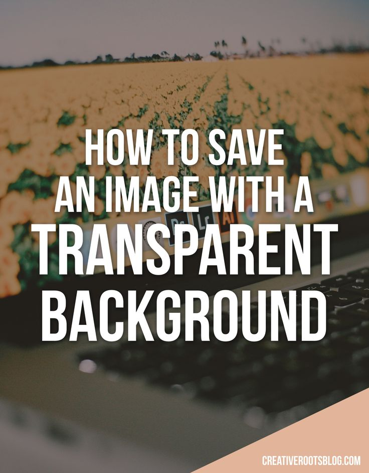 For this tutorial on saving and image with a transparent background, you will need Photoshop. There are a variety of packages, bundles and free trials available if you don't already use this program. Click here to read my overview of the Adobe Creative Suite and a breakdown of the pricing structure. If you're tired of…