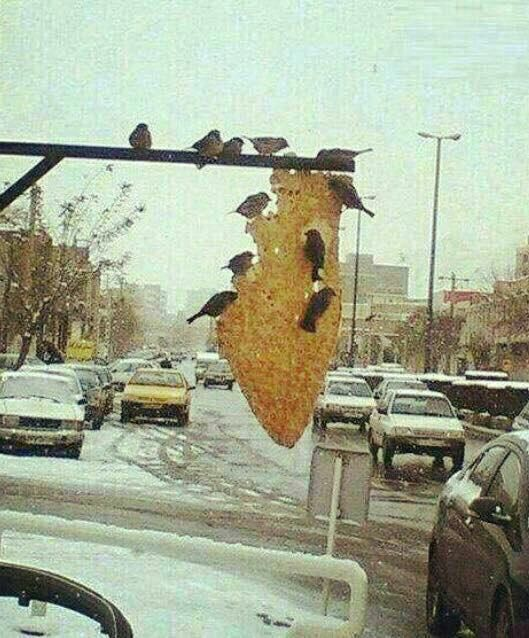 Bread for birds, Iran.