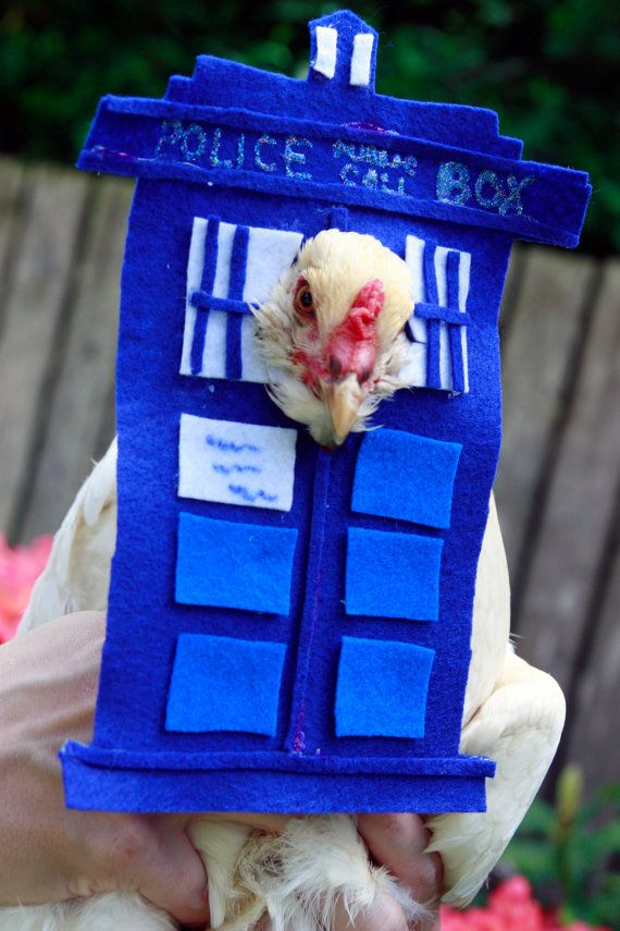 Tardis Dr. Who Chicken Costume by MuchAdoAboutCluckin on Etsy