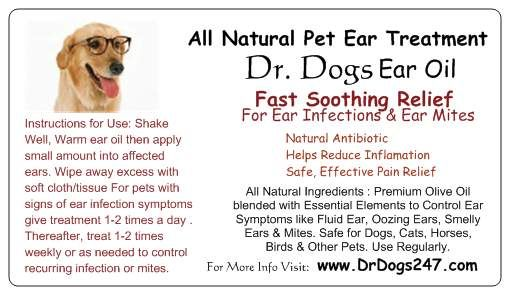 Best Natural Ear Wash For Dogs