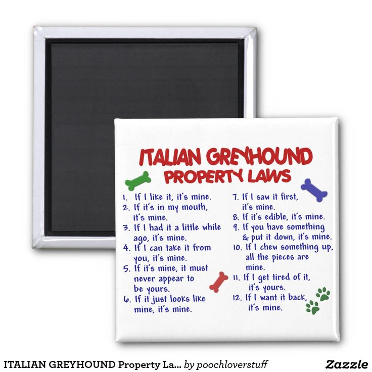 ITALIAN GREYHOUND Property Laws 2 Inch Square Magnet