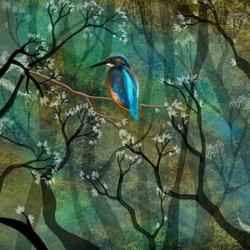 Kingfisher - Kate Morgan - Artist & Illustrator