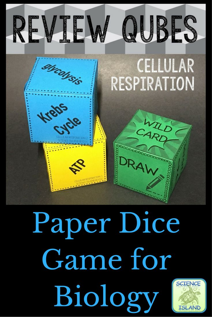Review Qubes are adorable little paper dice that students use to play an engaging, yet entertaining, review game. Designed for high school Biology.