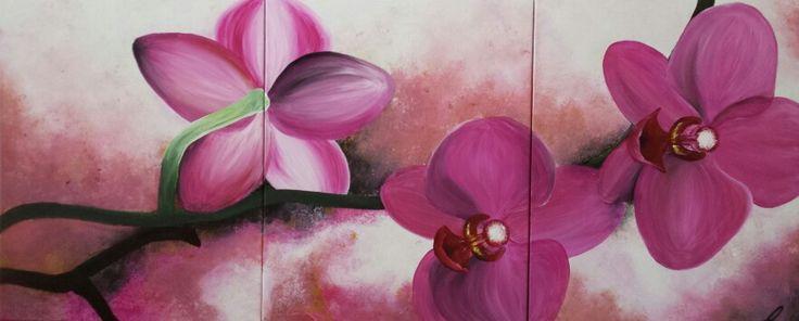 Orchideen pink