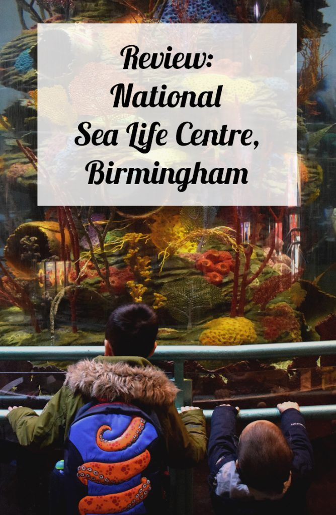 See what we thought of the National SEA LIFE Centre, Birmingham