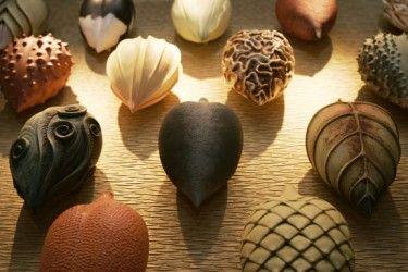 Alice Ballard Ceramic Pods Art Miscellaneous Mediums