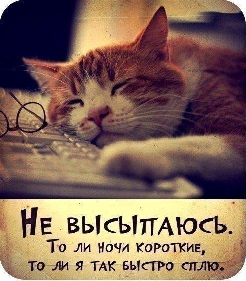 Сон лучшее из лекарства.
