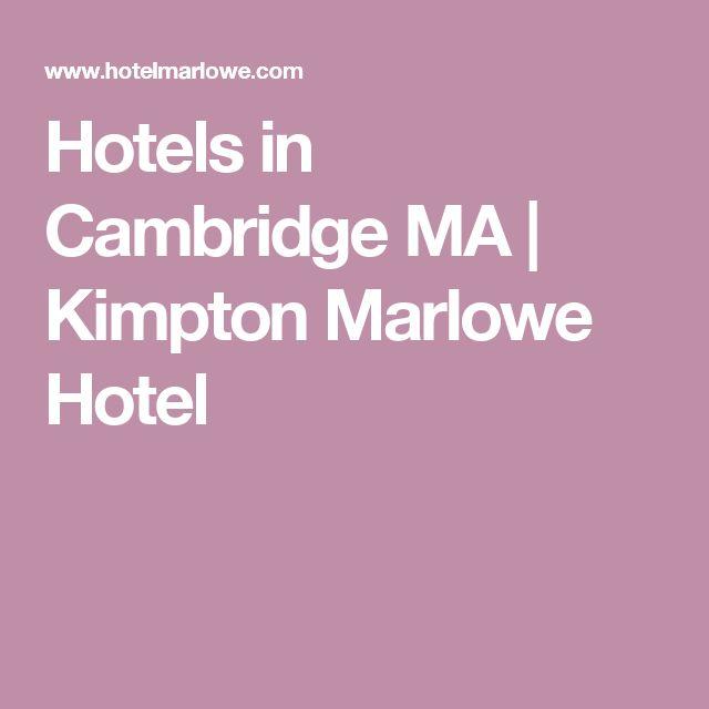 Hotels in Cambridge MA   Kimpton Marlowe Hotel