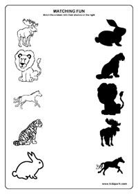 Animals Worksheets,Teachers Activities for Children,Printable Activity Sheets