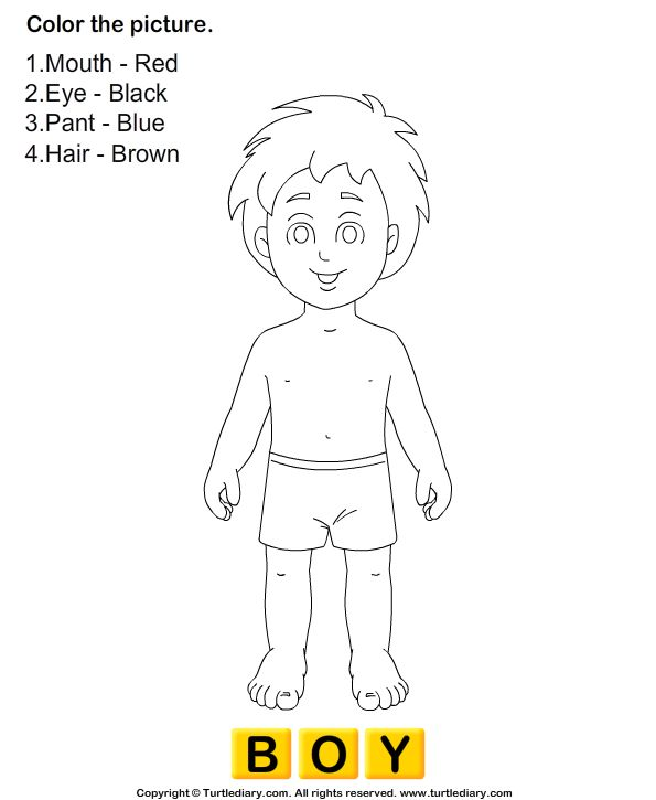 Download and print Turtle Diary's Human Body Coloring