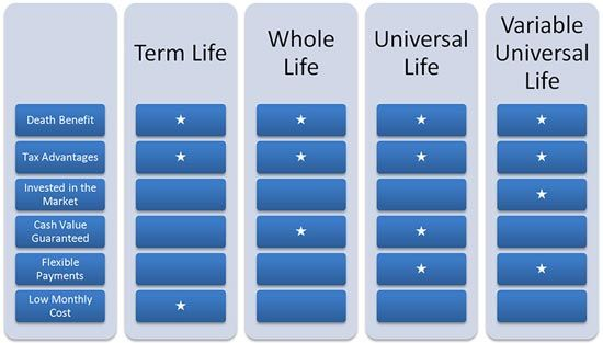 The Many Types of Whole Life Insurance