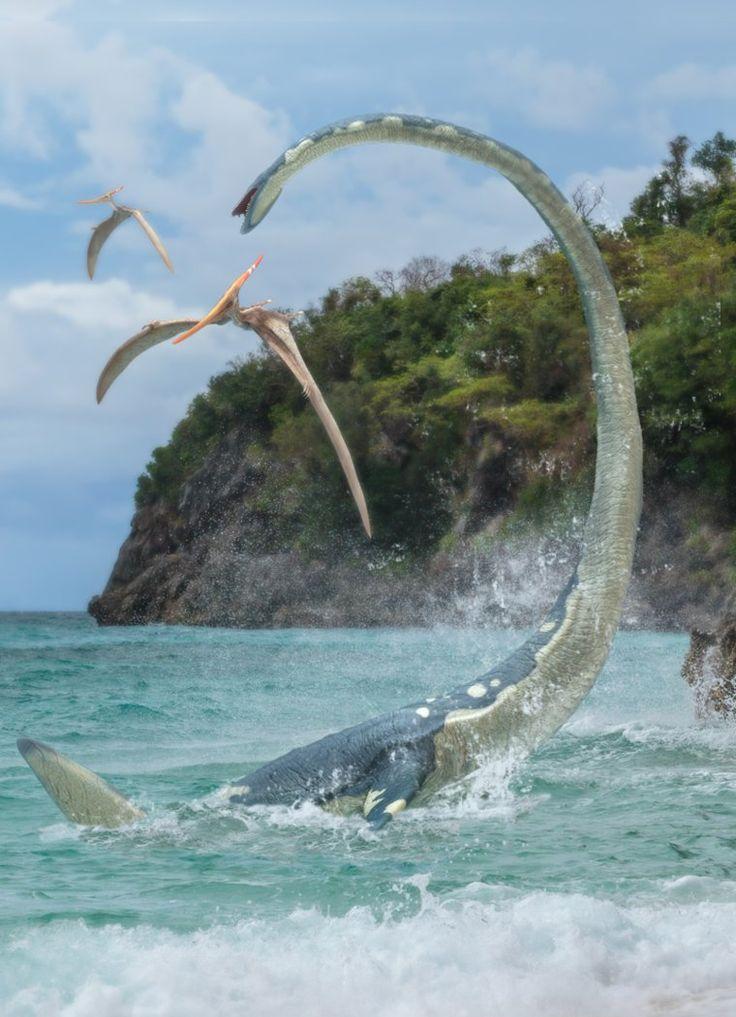 Elasmosaurus by Herschel-Hoffmeyer on DeviantArt