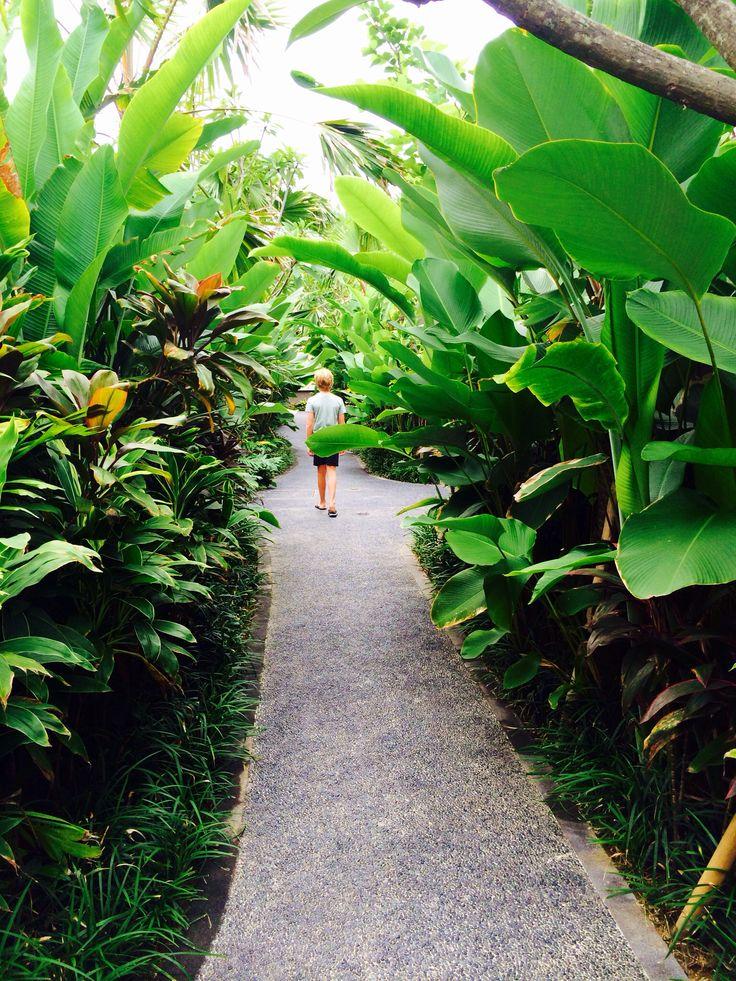 Tropical Garden, Bali