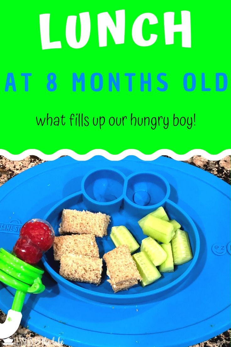 Baby Finger Food Ideas in 2020 12 month baby food, 8