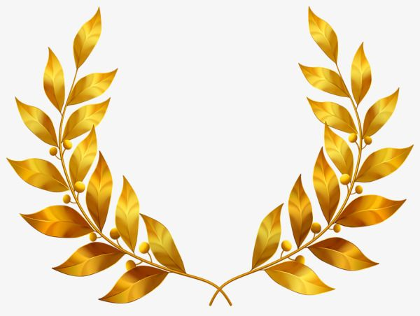 Golden Laurel Leaves Golden Lauryl Gold Leaf Png Transparent Clipart Image And Psd File For Free Download Laurel Leaves Leaf Clipart Flower Stationary