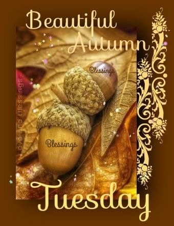 Tuesday Blessings! ❤️