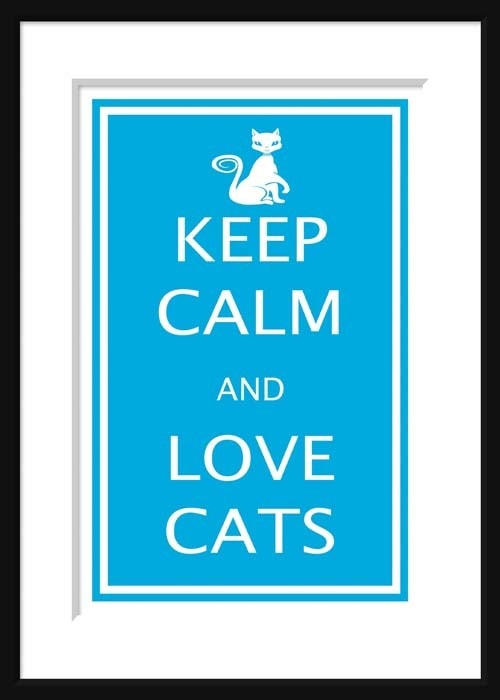 Love cats and you will be calm and lovedKitty Cat, Collection Calm, Picture-Black Posters, Love Keep Calm, Lovekeep Calm, Crazy Cat, Things, Animal, Cat Lady