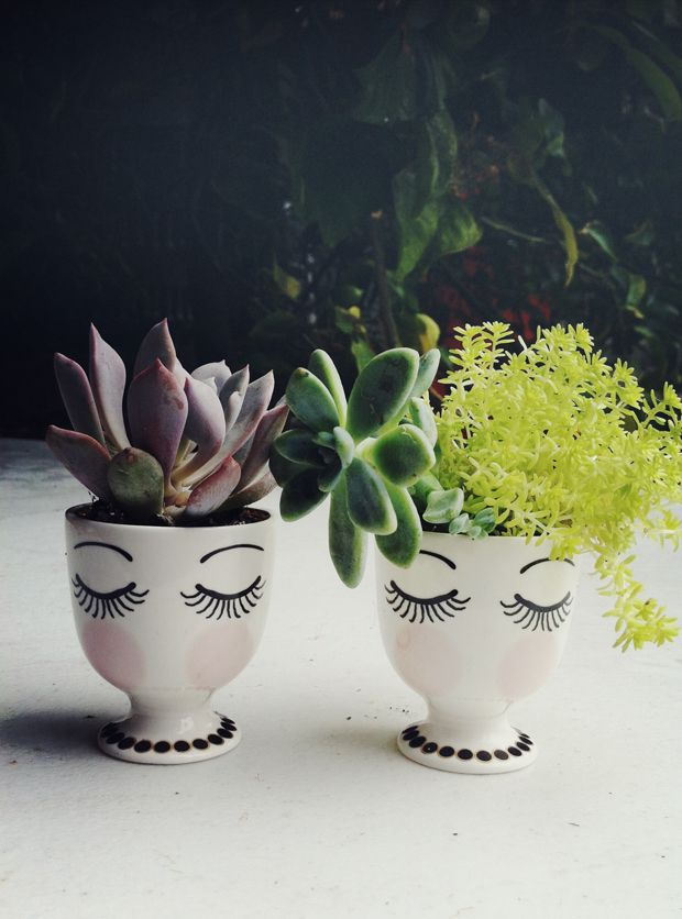 Paint Little Faces on egg cups. Tiny succulents for hair.