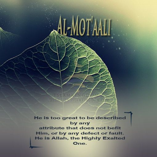 Allah is Al-'Aley (the Supreme), Al-'Alaa (the Most High), Al-Mot'aali (the Highly Exalted One) http://en.islamkingdom.com/Doctrine_and_Tawhid/Know_Allah_by_knowing_His_Names_and_Attributes/Life_with_Allah_and_His_Beautiful_Names_and_Supreme_Attributes/Allah_is_Al_Aley_Al_Alaa_Al_Motaali #love of Allah #hope from Allah #islamkingdom