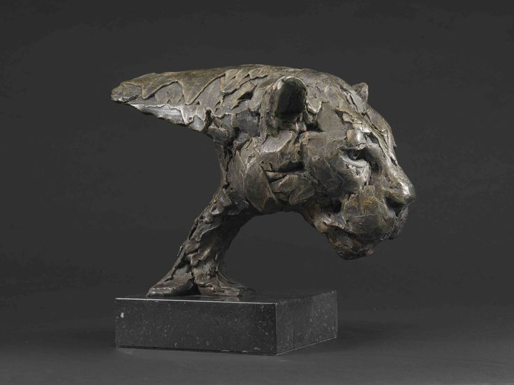 bronze sculpture of Leopard Head Study 2014 by Hamish Mackie