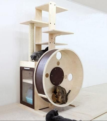 wooden cat scratch post with exercise wheel
