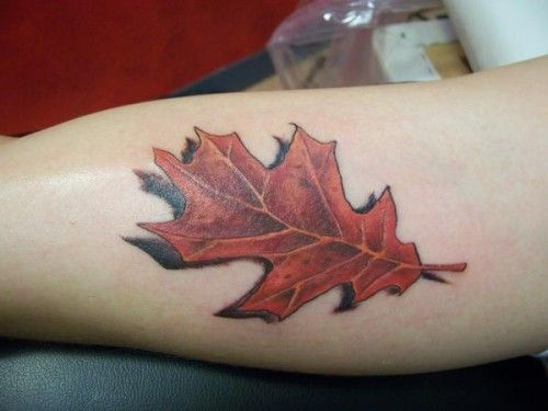 Oak Leaf Tattoo, nice shadowing