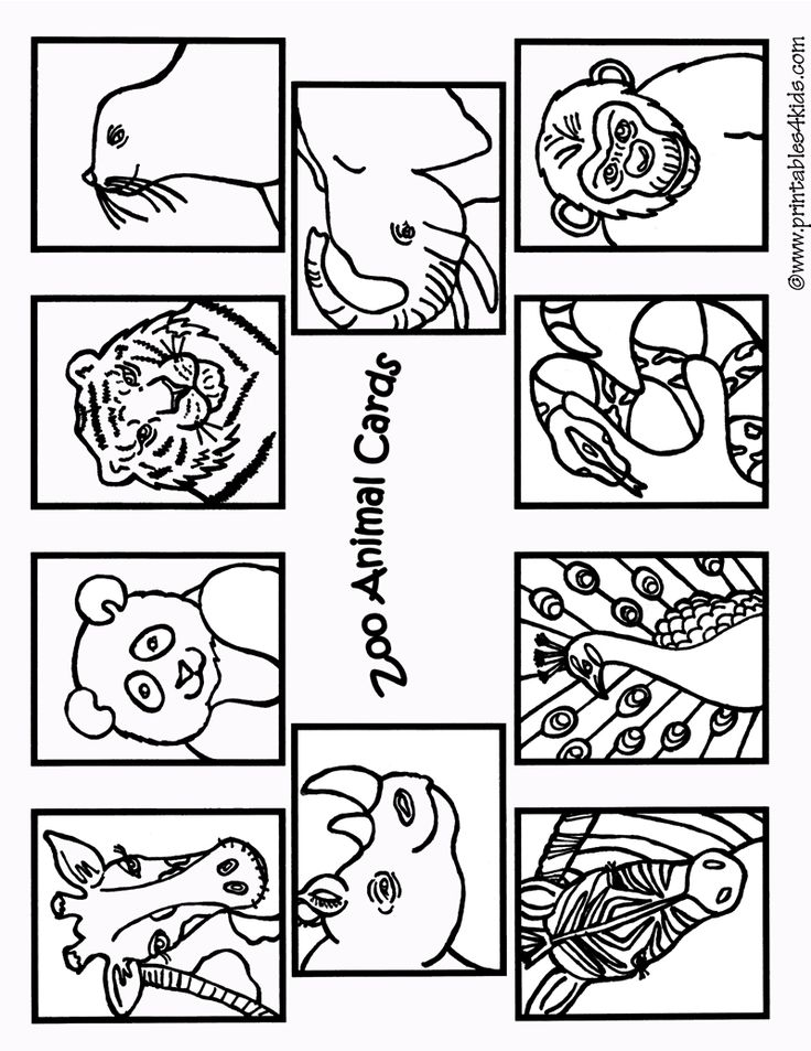 zoo animals coloring cards1 printables for kids free word search puzzles coloring pages. Black Bedroom Furniture Sets. Home Design Ideas