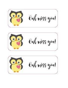 "Use these owl themed tags for your end of the year student gift bags! -Each tag says ""Owl Miss You!""-There are 3 tags per page."