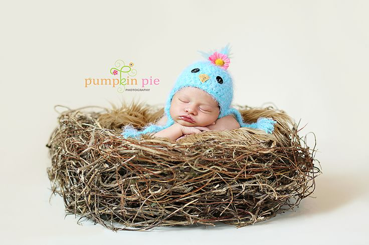 Already got the props for a shot similar to this - just need a newborn!  lol