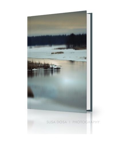Winter landscape, artful beauty image, cold tones, grainy image 5238px X 3492px at 300Dpi  FOR BOOK COVER - AUDIO BOOK - E BOOK - PRINTED BOOK  COPYRIGHT note and License -  Please read! One time fee  - non exclusive license for book cover design. Name of person who owns the copyright to this image: