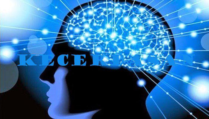 Pengertian Kecerdasan, Jenis dan Faktor Yang Mempengaruhi Kecerdasan Terlengkap - http://www.pelajaran.co.id/2017/15/pengertian-kecerdasan-jenis-dan-faktor-yang-mempengaruhi-kecerdasan.html