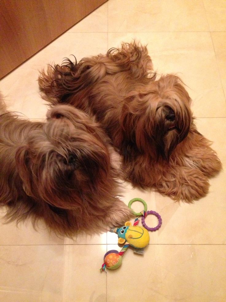 Xtian & Tiffany