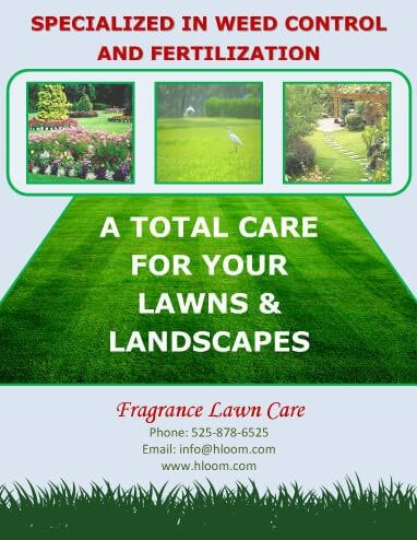 weed control service flyer template