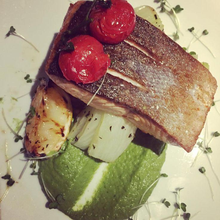 Organic Salmon on crushed potatoes w/ broccoli cream & roasted fennel #eatateno