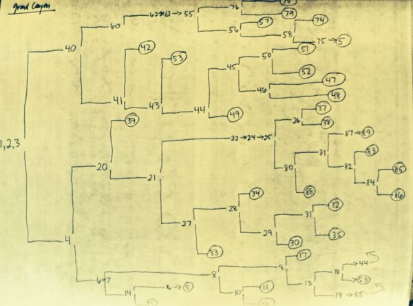 Author Jay Leibold shares the branching maps he created while writing his first CYOA stories.