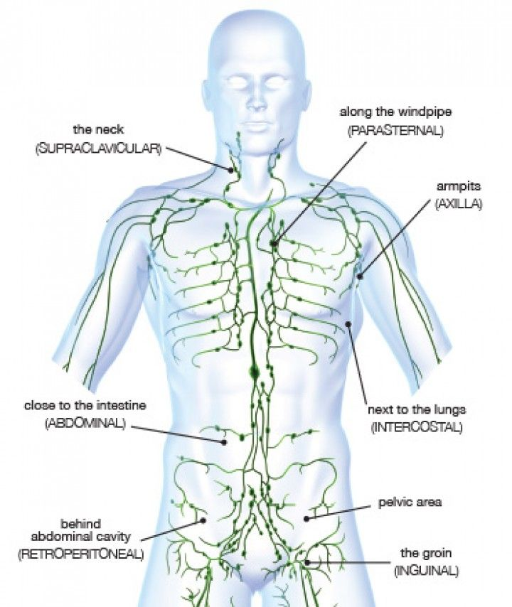 Lymphatic System Treatment Natural